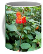 Nature's Jewel Coffee Mug