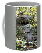 Nature's Mossy Boulders Coffee Mug