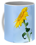 Nature's Sunshine Coffee Mug