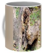 Nature's Wood Abstract Coffee Mug