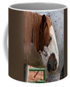 Navajo Paint Coffee Mug