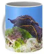 Navanax Inermis Coffee Mug