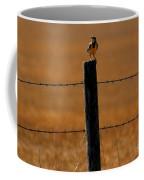 Nebraska's Bird Coffee Mug