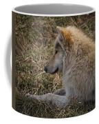 Needed Break Coffee Mug