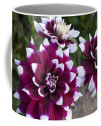 Neighbors Garden Treasures Coffee Mug