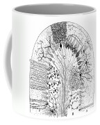 Nerve Cells, 1894 Coffee Mug