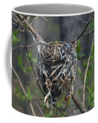 Nest Coffee Mug