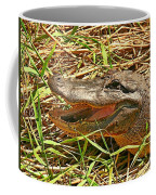 Nesting Alligator Coffee Mug