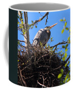 Nesting Great Blue Heron Coffee Mug