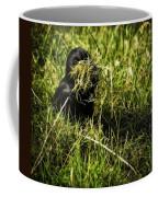 Nesting Material Coffee Mug