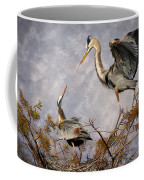 Nesting Time Coffee Mug by Debra and Dave Vanderlaan