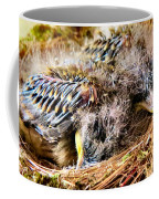 Nestled Coffee Mug