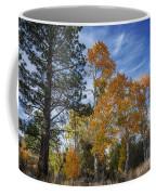 Nevada Fall Colors Coffee Mug