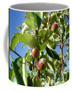 New Apples Coffee Mug