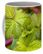 New Black Berry Leaves Coffee Mug