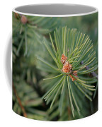New Blue Spruce Buds Coffee Mug