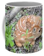 New Born Fawn Coffee Mug