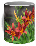 New Daylilies Coffee Mug