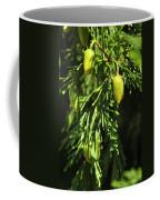 New Growth 25848 Coffee Mug