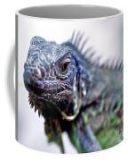 Close Up Beady Eyed Iguana Coffee Mug