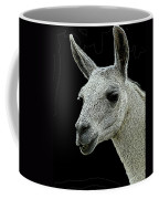 New Photographic Art Print For Sale   Portrait Of  Llama Against Black Coffee Mug