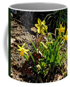 New Yellow Flowers 1 Coffee Mug