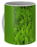 New York Ferns Coffee Mug