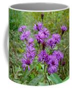 New York Ironweed Wildflower - Vernonia Noveboracensis Coffee Mug