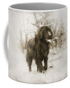 Newfoundland Friend Coffee Mug