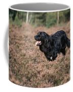 Newfoundland Running Coffee Mug