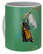 Newly-emerged Monarch Butterfly Coffee Mug