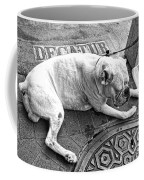 Newsworthy Dog In French Quarter Black And White Coffee Mug