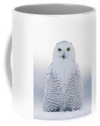 Nh Seacoast Snowy Owl  Coffee Mug
