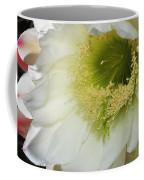Night Blooming Cereus Cactus Coffee Mug
