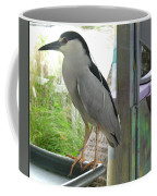 Night Heron Coffee Mug