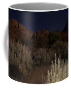 Night Sky Over Zion II Coffee Mug