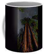 Night View Of Giant Sequoia Trees Coffee Mug