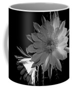Nightblooming Cereus Cactus Flower Coffee Mug