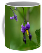 Nightshade Coffee Mug