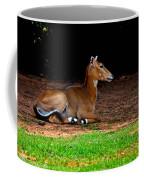 Nilgai Near Bird In Flight Coffee Mug