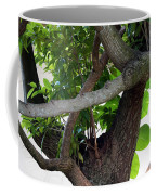 Nispero Tree Coffee Mug