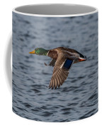Mallard Flight Coffee Mug