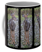 Curious Yearling Deer Coffee Mug