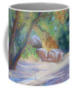 No Water At Cienega Creek Coffee Mug