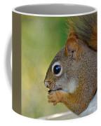 Nom Nom Squirrel  Coffee Mug