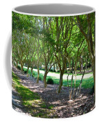 Norfolk Botanical Garden 3 Coffee Mug