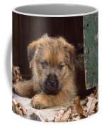 Norfolk Terrier Puppy By Barn Door Coffee Mug