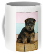 Norfolk Terrier Puppy Dog, Sitting Coffee Mug