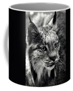 North American Lynx In The Wild. Coffee Mug