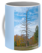 North Country Byway Coffee Mug